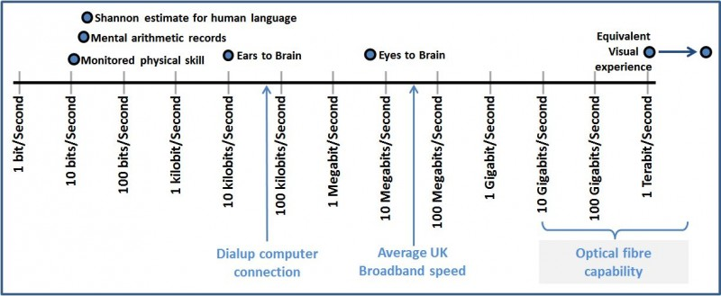 Bit Rates of Human Perception expressed as bits/second on a 12 decade logarithmic scale